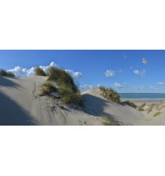 Burgh Haamstede duinen strand  zee Fotowand  fotobehang wanddecoratie muurposter natuurfoto natuurfotowand gerard veerling