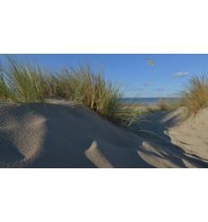 Burgh Haamstede duinen zee en strand Fotowand  fotobehang wanddecoratie muurposter natuurfoto natuurfotowand gerard veerling