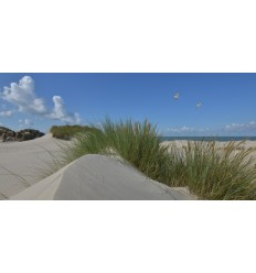 Fotowand Burgh Haamstede zee duinen en strand Fotowand wanddecoratie fotobehang muurposter natuurfoto natuurfotowand gerard veer