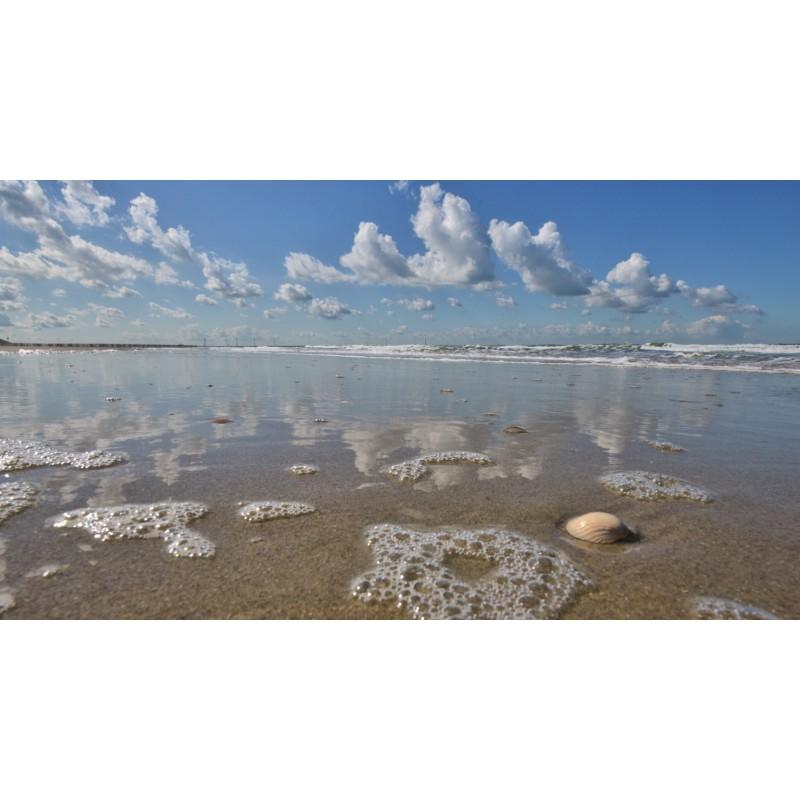 Fotobehang Strand Zee.Vloedlijn Langs De Noordzee Grote Keuze Fotobehang Strand En Zee