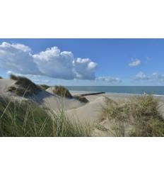 fotobehang duinen zee en strand  fotowand wanddecoratie muurposter natuurfoto natuurfotowand gerard veerling fotowandenshop.nl