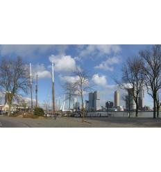 Fotowand fotobehang muurposter muursticker Rotterdam haven Skyline en kop van zuid Erasmusbrug