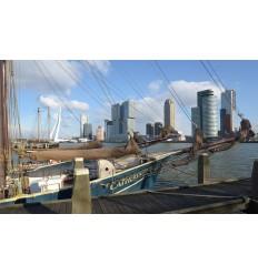 Fotowand Fotobehang muurposter muursticker Rotterdam haven Kop van Zuid Skyline en Erasmusbrug