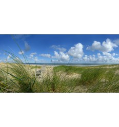 fotowand of fotobehang van bankje in de duinen van Vlieland