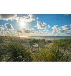 fotobehang of fotowand van Bankje in de Duinen van Vlieland