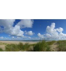 fotowand of fotobehang van de duinen van Vlieland