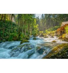 fotowand fotobehang muurposter Oostenrijk Gollingen waterval watermolen