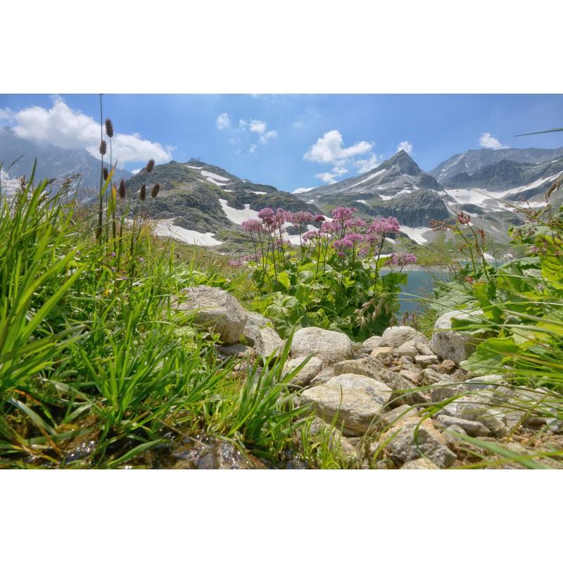 Fotowand fotobehang muurposter Alpen Oostenrijk Stubachtahl