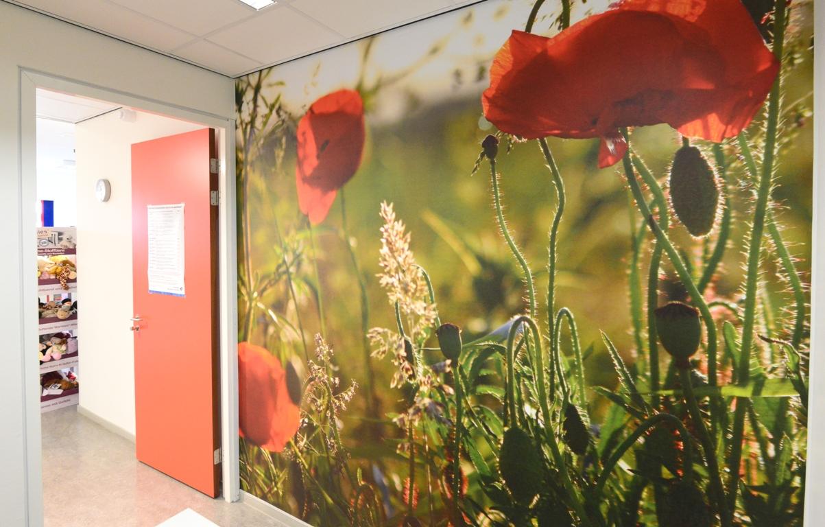 Wandfoto voorlichtingsruimte zorgcentrum. fotowandenshop.nl