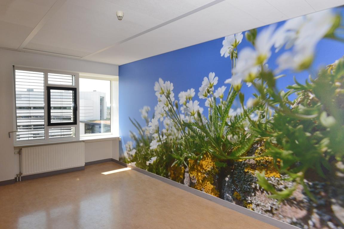 Fotowand ziekenhuis patientenkamer