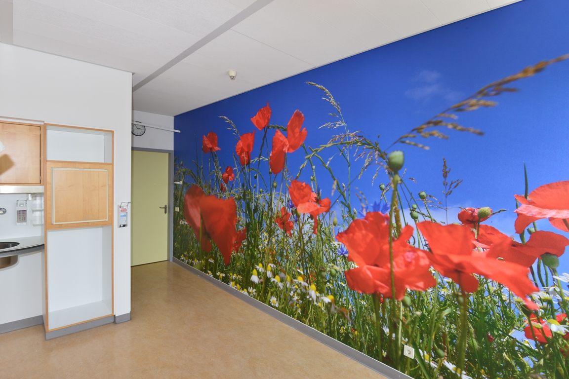 wandfotopatientenkamer ziekenhuis. fotowandenshop.nl