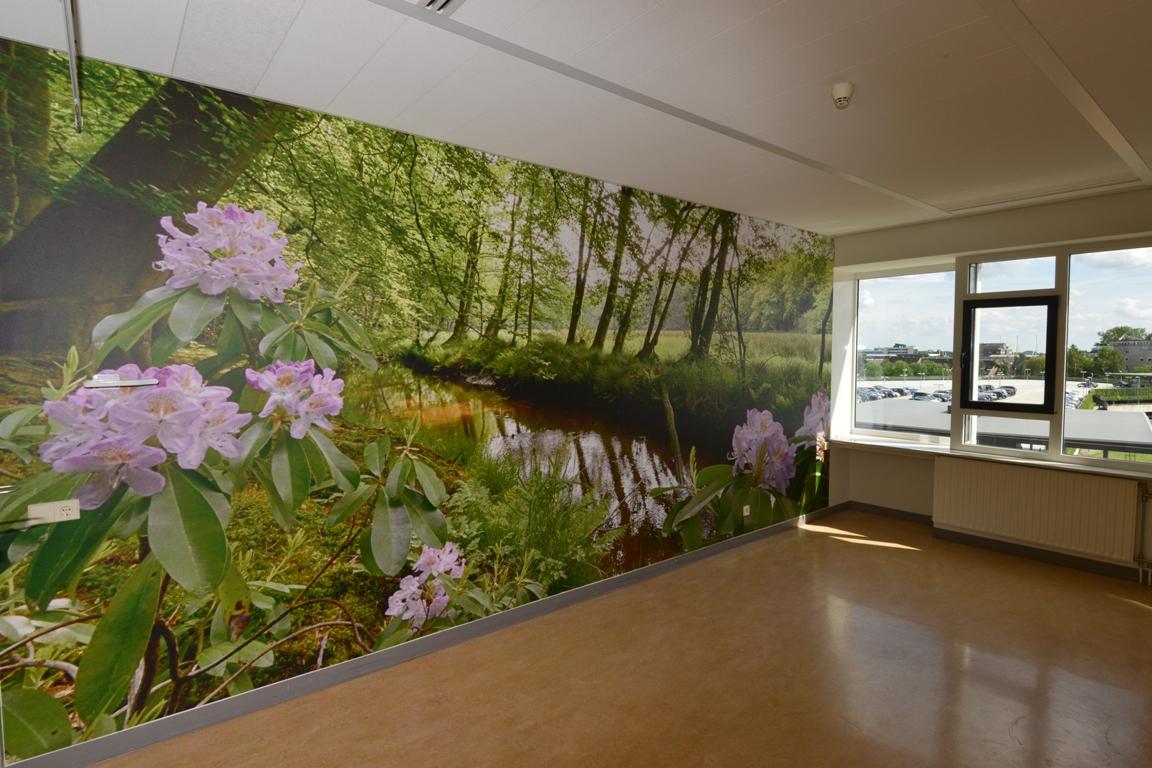 fotowand patientenkamer ziekenhuis. fotowandenshop.nl